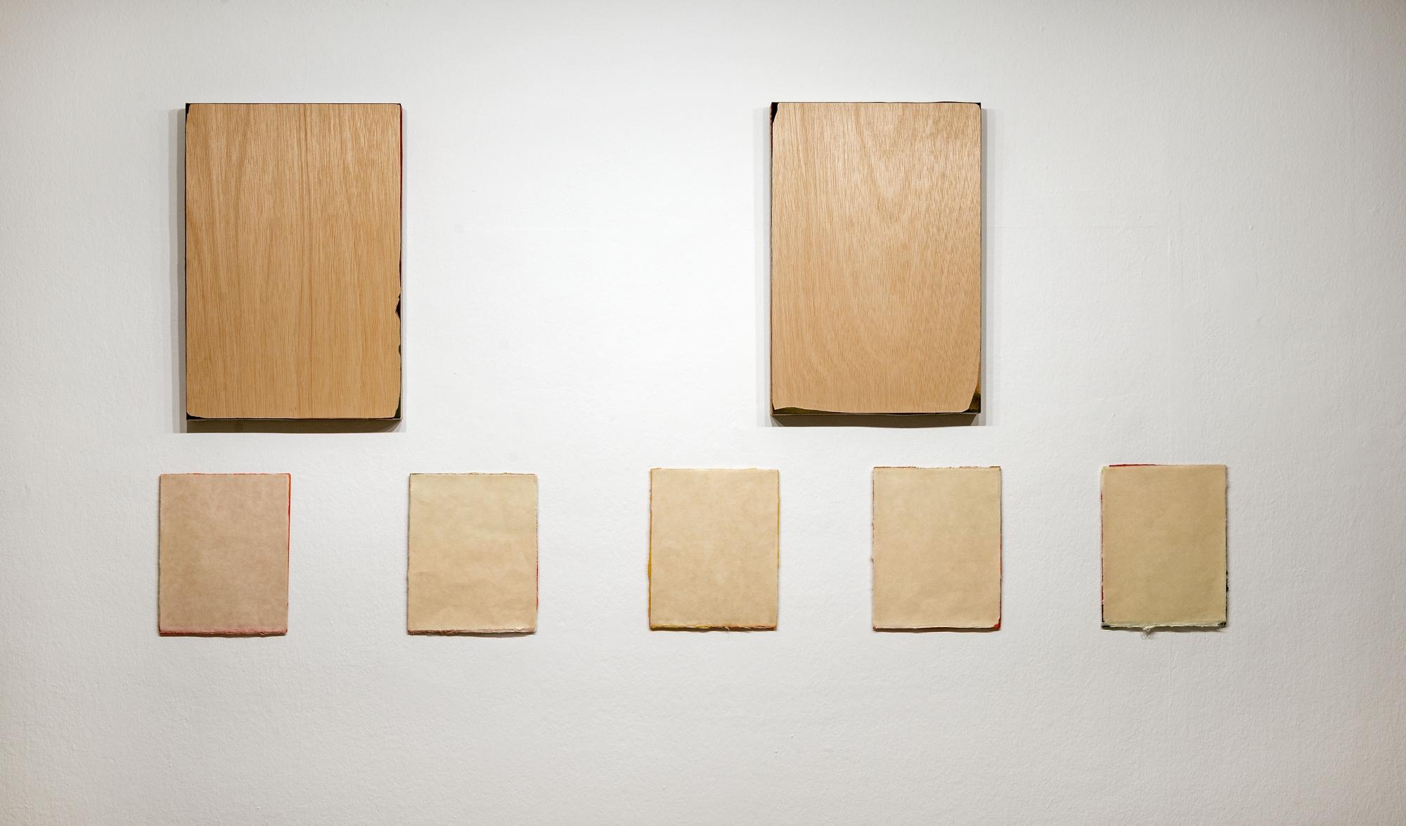 Litus .2017. Papel japonés sobre aluminio. 25 x 160 cm. 5 piezas de 25 x 21 cada una con una separación de 15 cm. //// Margo I y II. 2017. Acrílico sobre lino y madera. 50 x 34 cm. c.u. Nico Munuera 2017.